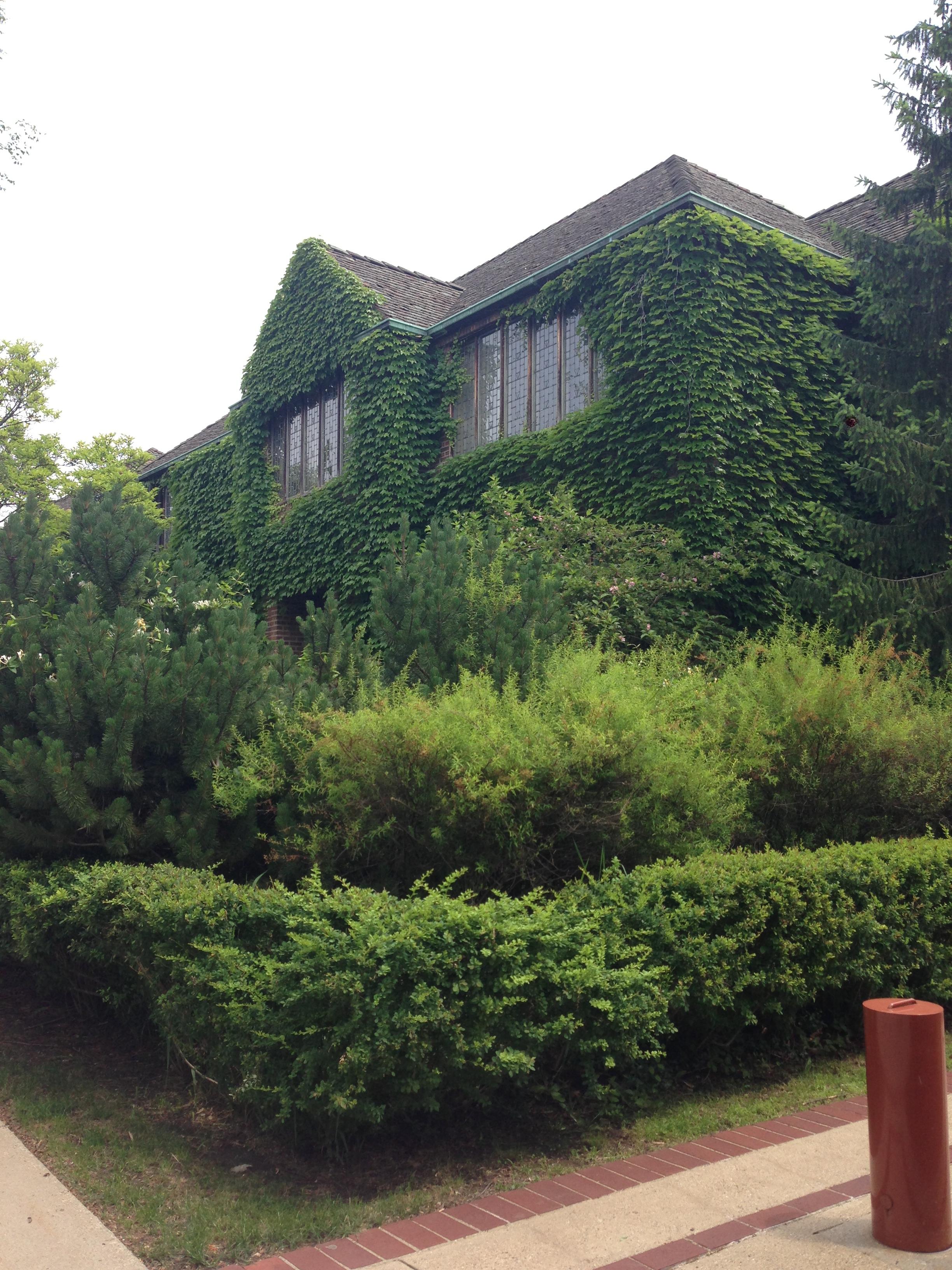 Saarinen House – (historical) House Tour – lizzymuzzy designs
